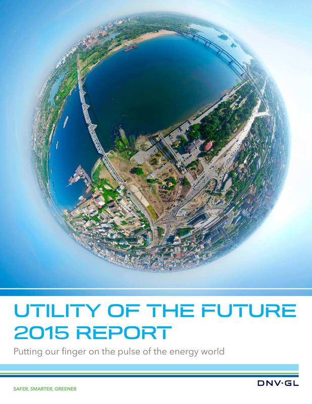 Utility of the Future Pulse Survey 2015 Report.pdf