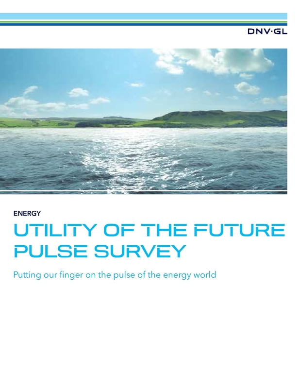 Utility of the Future Pulse Survey Report 2014