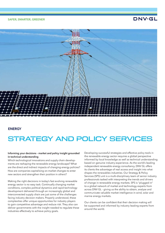Strategy and policy services