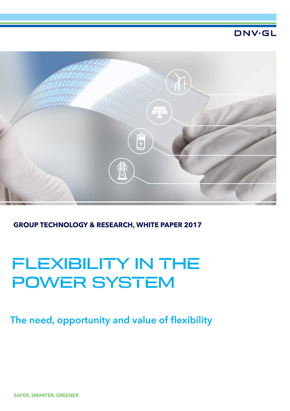 Flexibility in the Power System - white paper