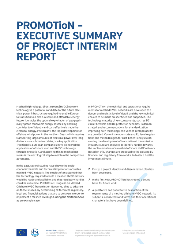 PROMOTioN executive summary of the interim report.pdf